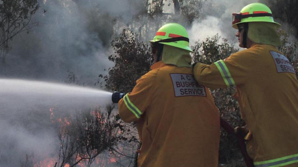 Volunteer forest forest firefighters. Photo by Wikipedia