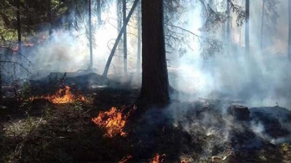 Forest fire in Värmland County, Sweden 2018