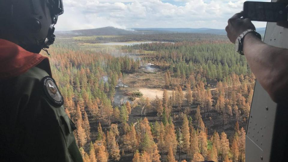 The detonation area is inspected right after the bomb was deployed by the Swedish Air Force during the forest fire in Dalarna in July 2018. Photo by Mats Nystrlm, Swedish Armed Forces.