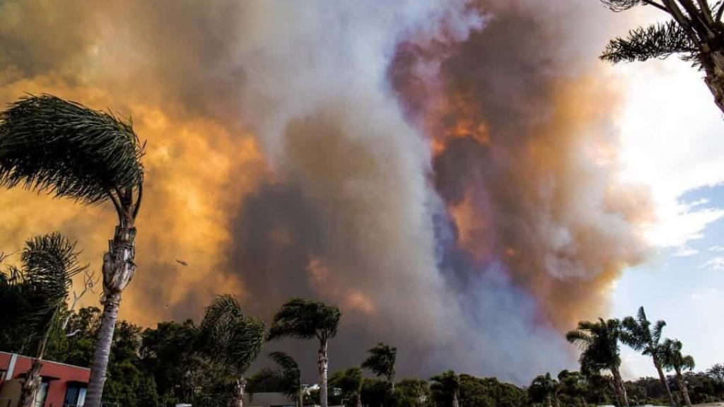 The Tathra bushfire during its peak on Sunday. Photograph: Chris Bowles