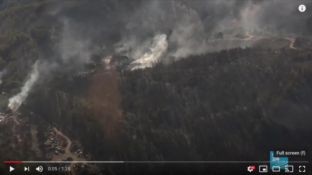 Forest fire near Marseille. Screen shot from France24